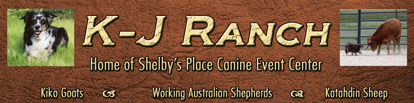 K-J Ranch, Livestock and Working Dogs